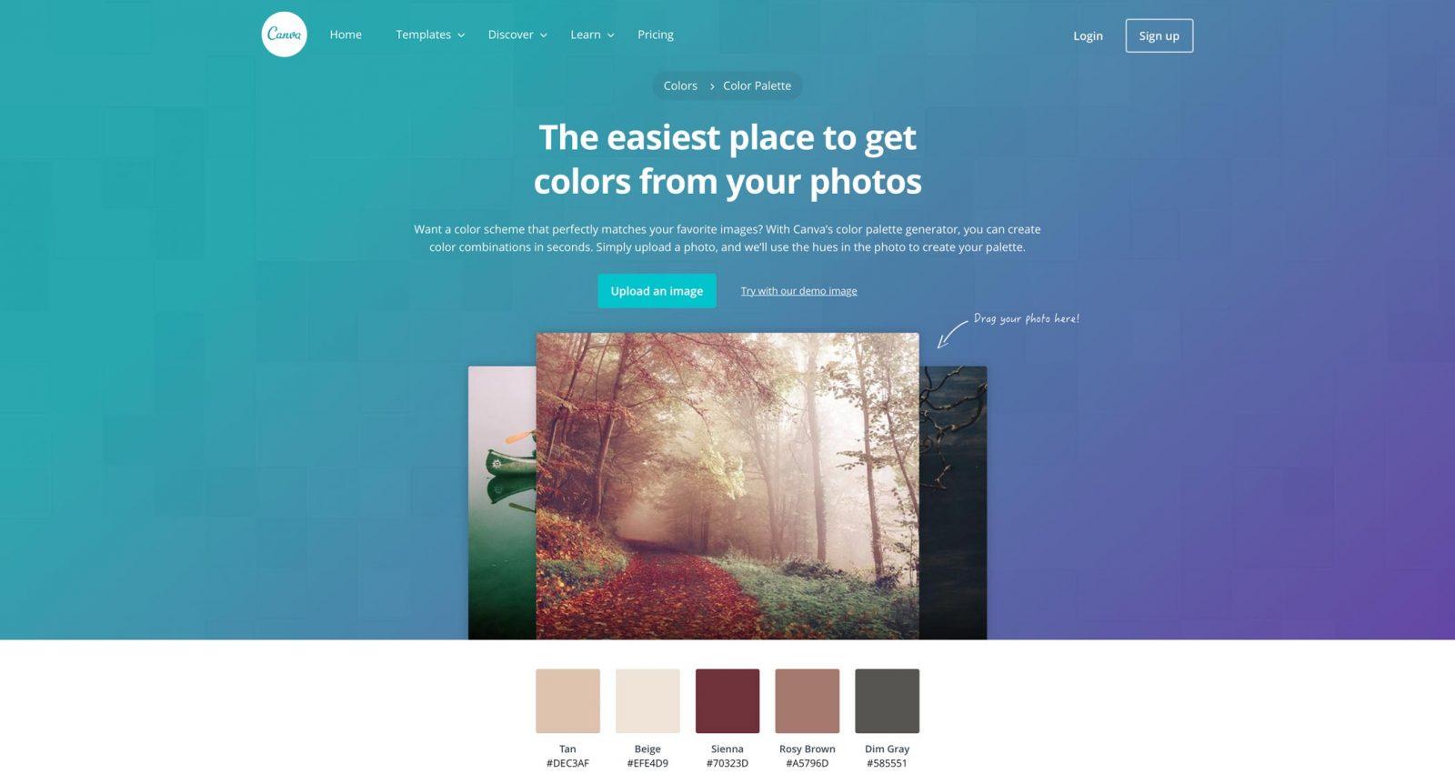 palette siti web